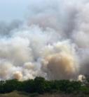 Prevén condiciones para más incendios forestales por altas temperaturas van 176 en el estado