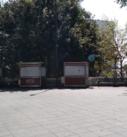 Piden ayuda a Hipólito Comerciantes y boleros del parque Juarez por baja y nulas ventas