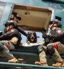 Será  en Veracruz el primer Diplomado Internacional Táctico K-9 Perros Multipropósito en el país